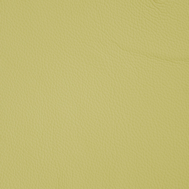 Chartreuse Leather