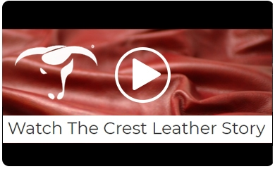 Play Crest Leather Story