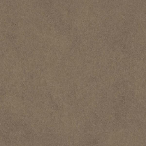 Vaquero-Fawn