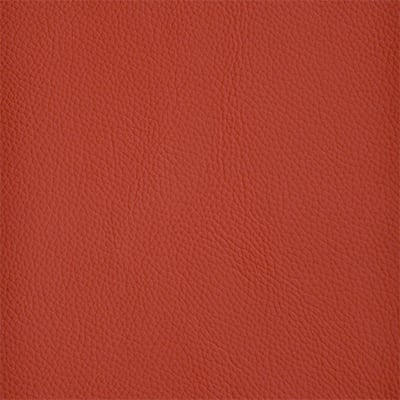 41-Shelly-Crimson_400px