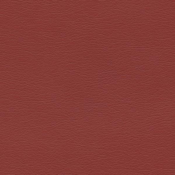 554-1329-Rhubarb