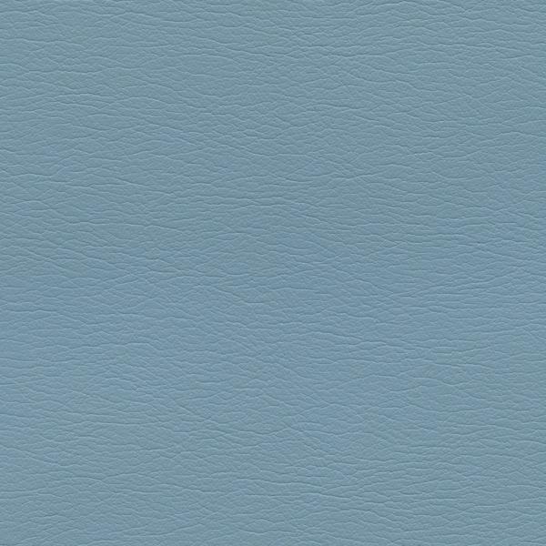 554-2661-Blue-Bird