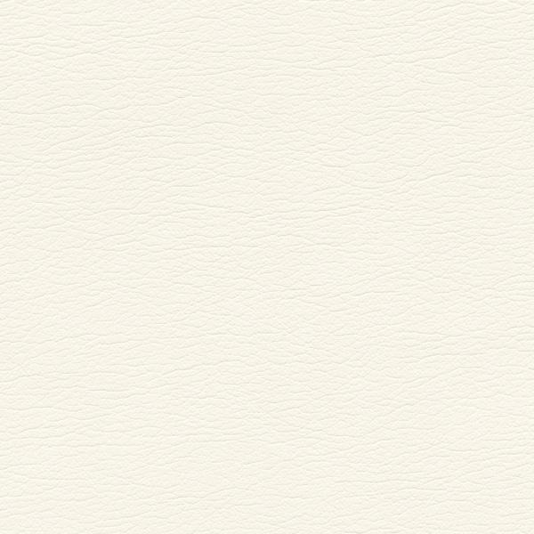 554-3811-Swan