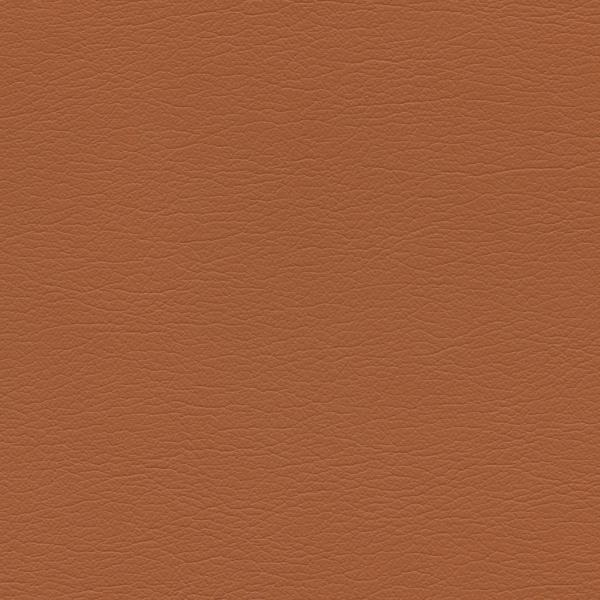 554-3835-Raw-Sienna