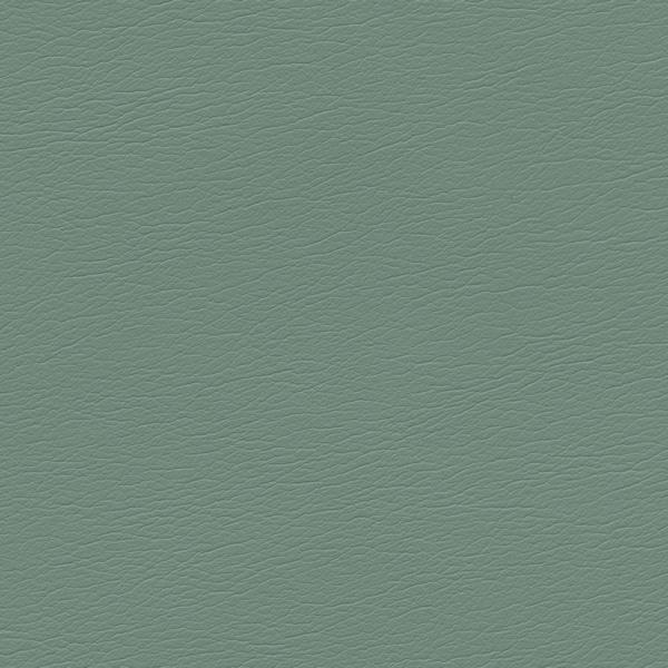 554-4315-Agave