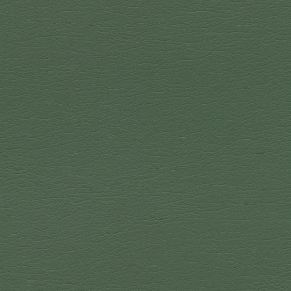 554-4333-Arugula
